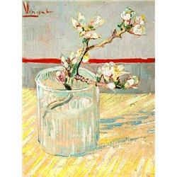 Fleur dans un verre