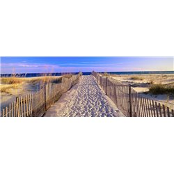 Pathway to the Beach, Florida, USA