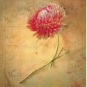 Laminas Flores Rústico